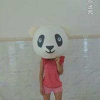 panda-mould